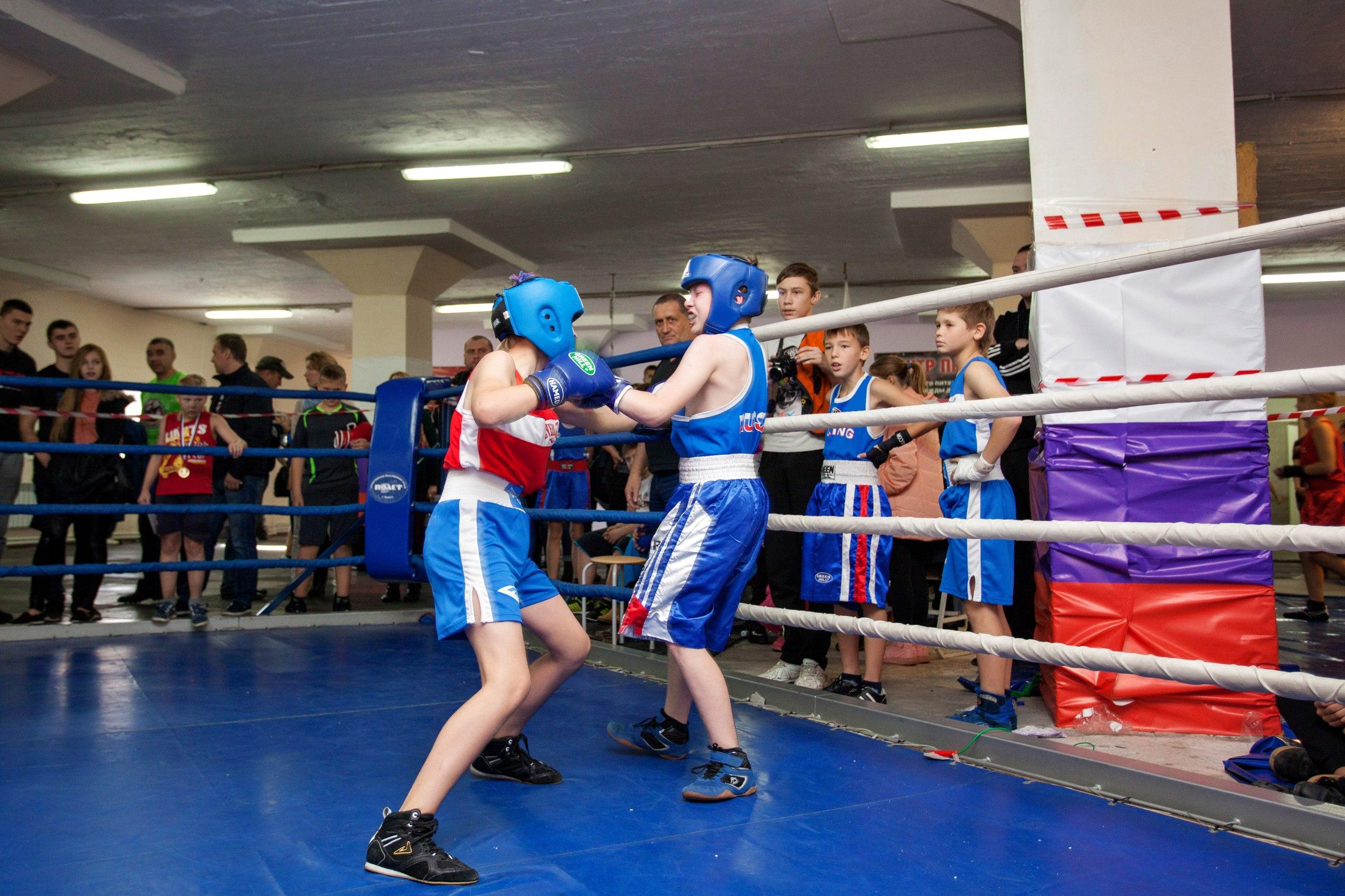 Картинки школа бокса